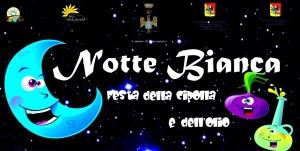 Manifesto NOTTE BIANCA 2015